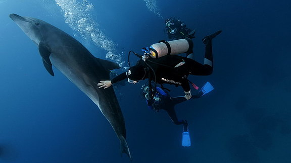 wirodive-guadalupe_socorro_repositioning_trip (8).jpg