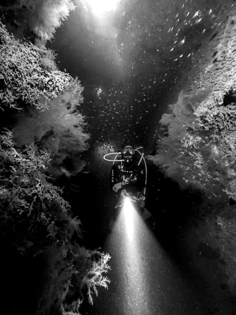 akitsushima__passage_with_corals_800px.jpg